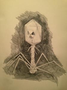 T2 phage